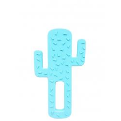 Minikoioi glodalica Cactus Blue101090003
