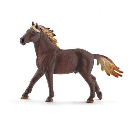Mustang pastuv