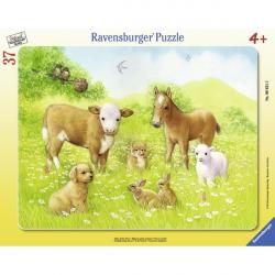 Ravensburger puzzle Zivotinje u prirodi 37kom