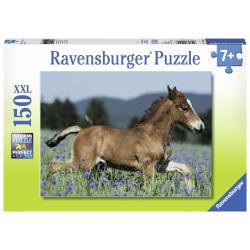 Ravensburger puzzle XXL Ždrebe 150kom
