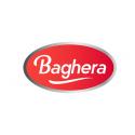 Baghera Logo
