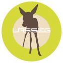 LASSIG Logo